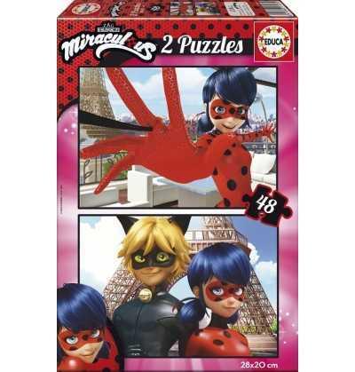Puzzle 48 Ladybug