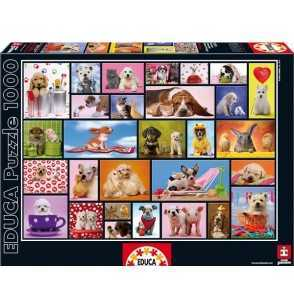 Puzzle 1000 Momentos Compartidos