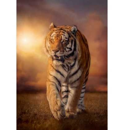Puzzle 1500 Tigre